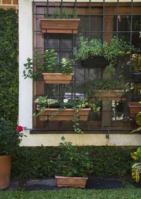 Flower Pots Arranging Ideas Sri Lanka Home Decor
